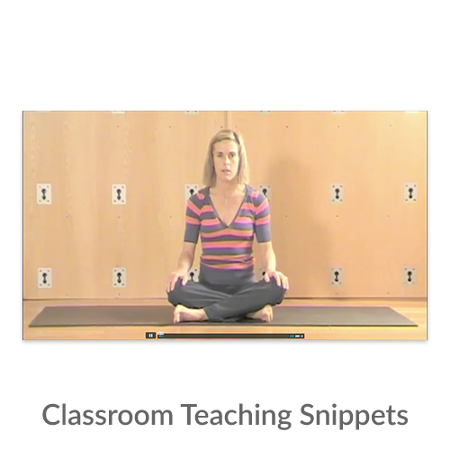 Classroom Teaching Snippets