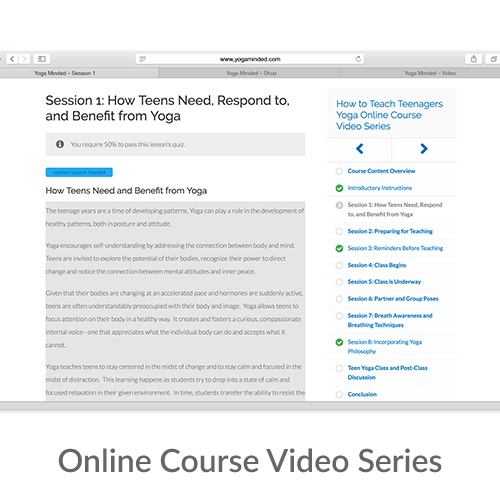 Online Course Video Series