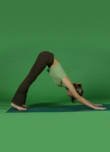 4. Downward Facing DogBenefits: Provides internal time (head and face are down) with no comparison to others. Relieves the spine. Develops flexibility and strength in legs and shoulders. Inverted position of the upper body is good for regulating glandular functioning (hormones). Note on doing the pose: Aim to get the apex of the pose (below the navel) high. Hands should be completely spread and feet should be placed body-length away from the hands.